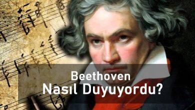 Beethoven Nasıl Duyuyordu ?